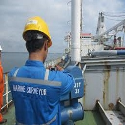 Surveyors - Marine